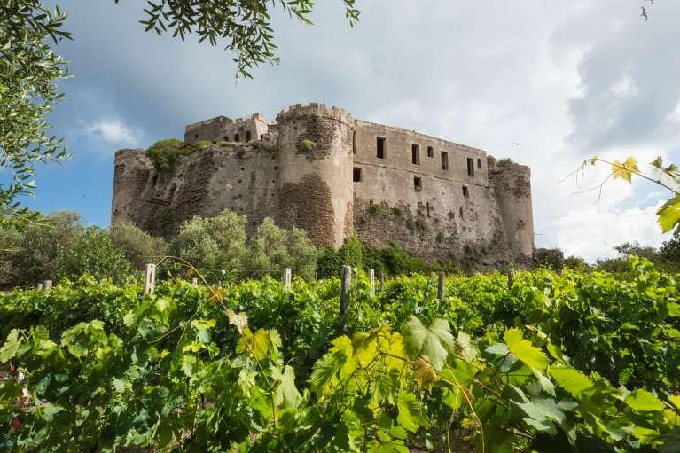 Le vin du château